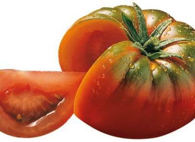 tomate-marmande-jardins-de-vartan