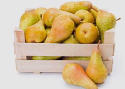 fruits-de-saison