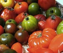mélange de tomates anciennes