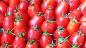 tomates coulis