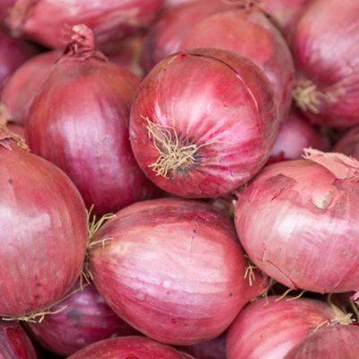 oignon-rose-roscoff